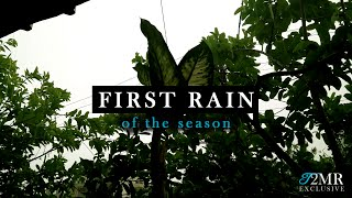 Monsoon: The First Rain of the Season