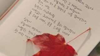Lagu korea romantis Crush Beautiful life ost Goblin (Full HD)