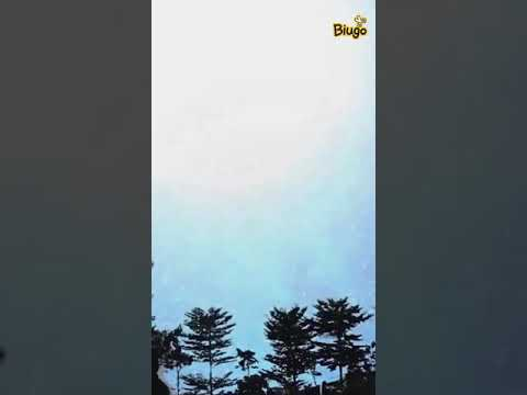 Download Video Bokep Indonesia Biugo