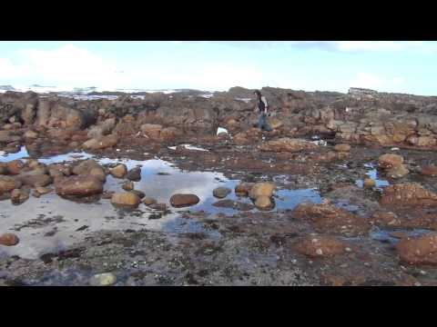 The Cape of Good Hope – South Africa