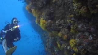 Tsarabanjina: L'isola che C'È