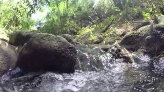 Jamaica - Mountain Stream Sounds
