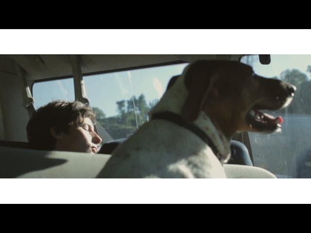 Videoclip oficial de Living My Life de Deerhunter
