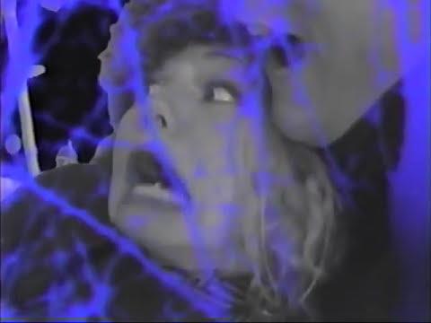 Flight Of The Skajaquada de Green Jelly Letra y Video
