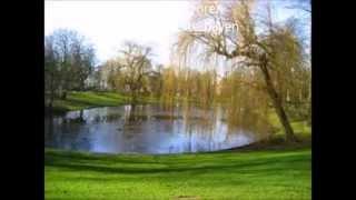Het gras van het Noorderplantsoen