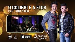 Zé Henrique e Gabriel -  O COLIBRI E A FLOR (Vídeo Oficial)