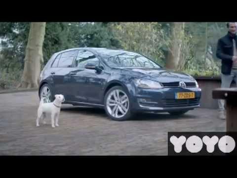 Kendini Araba Sanan Köpek :)