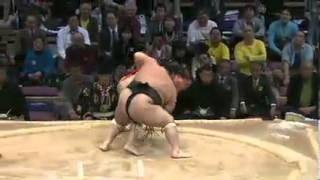 千代鳳vs朝赤龍 十両取組 2013/11/15