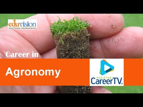 Career in Agronomy