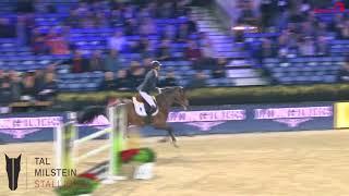 LUIGI D'ECLIPSE Z CSIW Mechelen 6yo - 8th