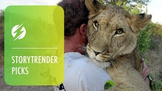 Humans Amazing Friendship With Lion