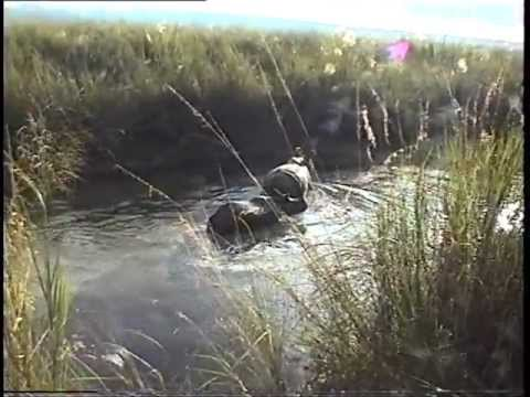 NEPAL Chitwan National Park (sd-video).VOB