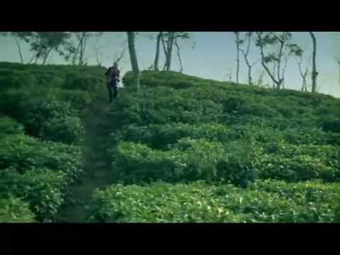 Beautiful Bangladesh – School of Life [Extended version]