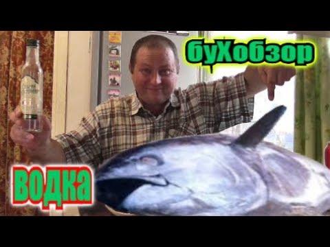 Пью ВОДКУ под ТУНЕЦ и зелЁный ОГУРЕЦ... photo