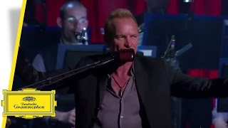 Sting - Desert Rose - Royal Philharmonic Concert Orchestra (Live in Berlin)