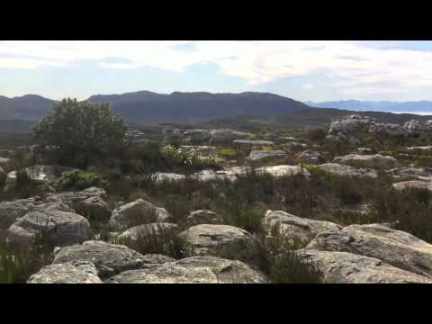 Hike in Redhill Nature Reserve, Cape Town – 7 August 2011