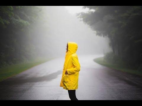 Regnet faller – strømprisen faller // LOS Energy Kraftkommentar uke 32