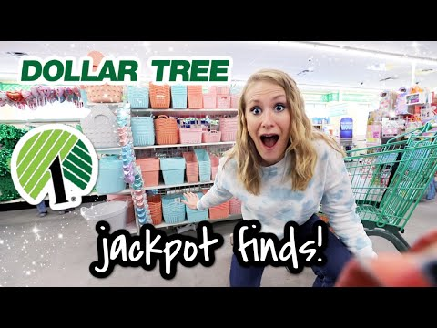 10 Dollar Tree Jackpot Secrets! 😱 HOW TO FIND THE BEST STORE & NEW ORGANIZATION IDEAS 2021!