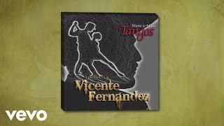 Vicente Fernández - En Esta Tarde Gris (Cover Audio)
