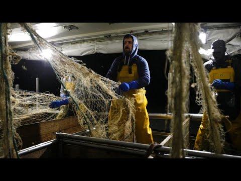 A halászat üzemanyagadó-kedvezményeinek eltörlését kérik aktivisták