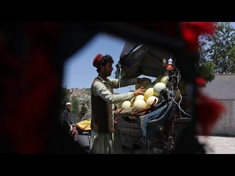 ENSZ: katasztrófa fenyeget Afganisztánban