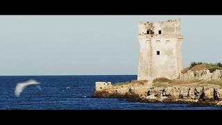 Villaggio Lido Nettuno - Oasi Naturale Torre Calderina - Spot 1