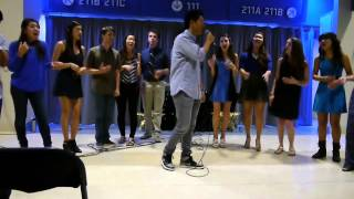 Time of Our Lives | Spring Concert 2014 | UCLA YOUTHphonics A Cappella