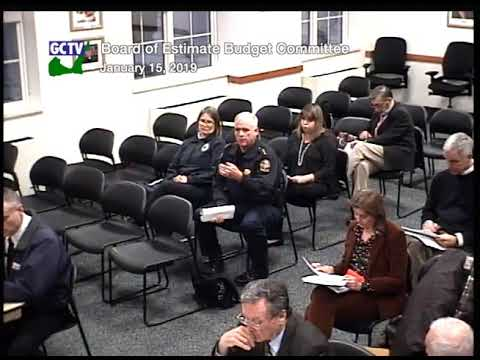 Board of Estimate & Taxation Budget Committee, January 15, 2019