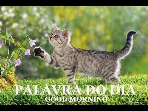 PALAVRA DO DIA 28/07/2019 - MENSAGEM DE BOM DIA MOTIVACIONAL PARA REFLEXÃO DE VIDA GOOD MORNING DAY