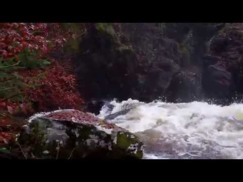 Autum Ossian's Hall Overlooking Gorge Hermitage Dunkeld Perthshire Highlands Scotland