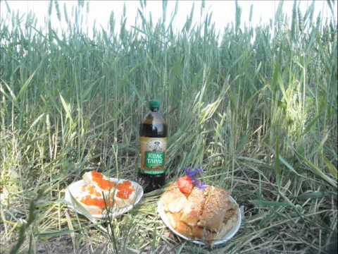 A culinary journey through the Ukraine