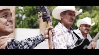 Grupo Tolerados -Proud Mary (Video Oficial 2016) ✔️