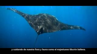 Quintana Roo: 5 Años Transformando México