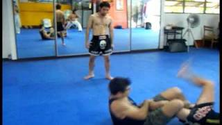 PHAYATHAI FIGHT GYM - MMA and Submission Grappling (BJJ)
