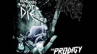 The Prodigy - Invaders must die (Remix)