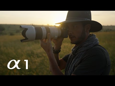 Sony Alpha 1 - Wildlife diary in the Serengeti by Chris Schmid