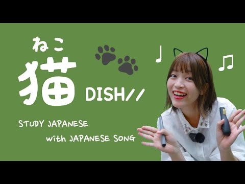 猫 / DISH//【日本の歌で日本語を勉強しよう #04】