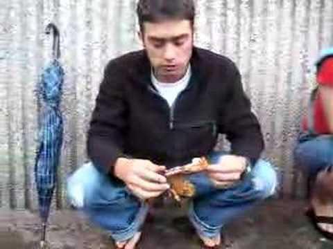 Me Eating Guinea Pig