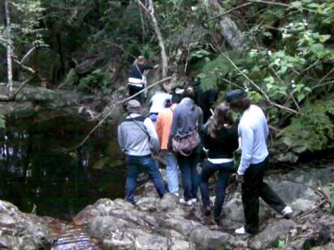 Walk to the waterfall (return back)