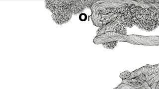Dona Zaíra - O mundo é osso?