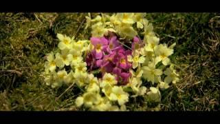 Tavaszköszöntő (Tavaszi szél vizet áraszt)
