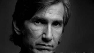 Townes Van Zandt - To Live Is To Fly (live)