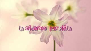 Alvaro Torres Y Marisela - Mi Amor Por Ti (lyrics)