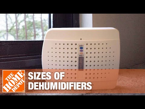 Best Dehumidifiers for Your Home