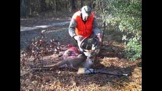 Blunderbuss Deer Encounter.wmv