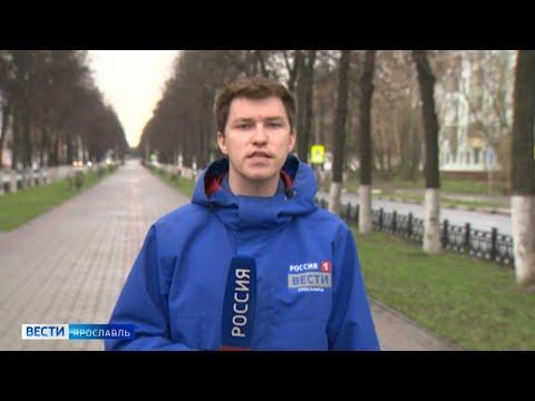 Ярославские синоптики обещают теплую и дождливую погоду на этой неделе