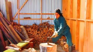 Como cortar lenha numa machadada só - Wwoofing na Nova Zelândia
