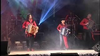 Minhotos Marotos - Dança do bicho   Live   Official Video