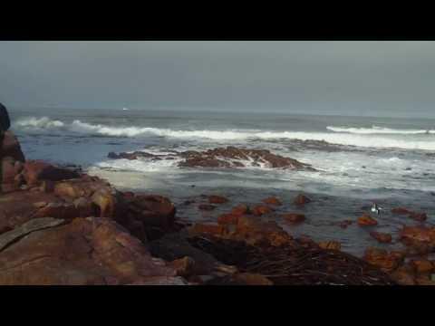 Cape of Good Hope, South Africa – Kaap de Goede Hoop, Zuid Afrika