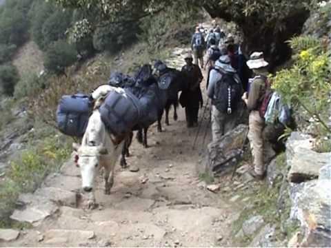 Nepal 2007 Part 02